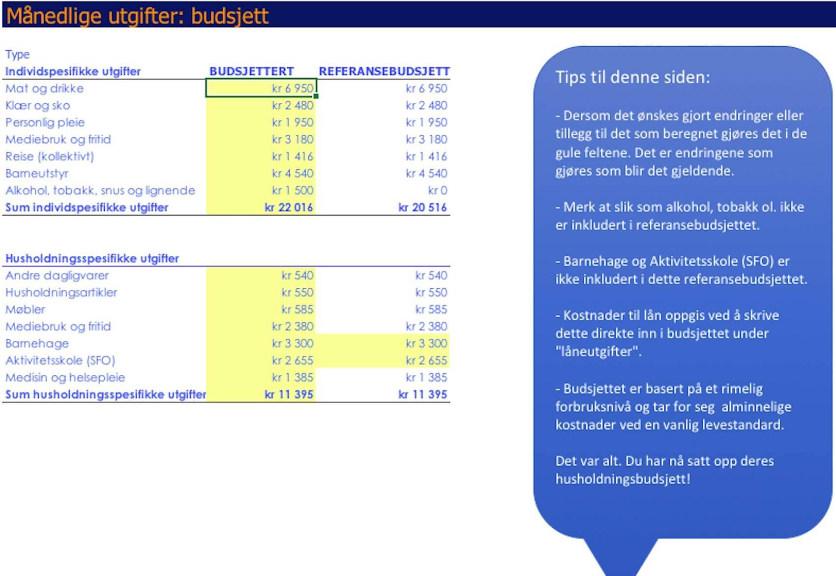 Budsjetterer som en bankmann - Husholdningsutgifter